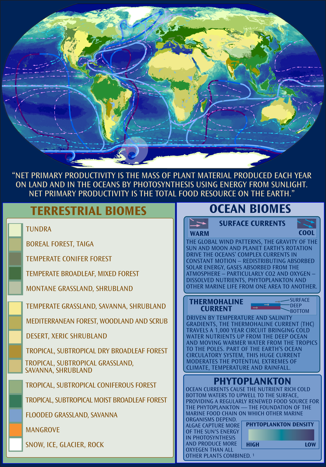 Terrestrial and Ocean Biomes