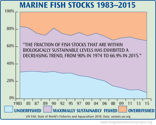 Marine Fish Stocks