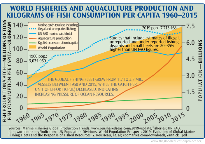 Total World Fisheries and Aquaculture Production Per Capita