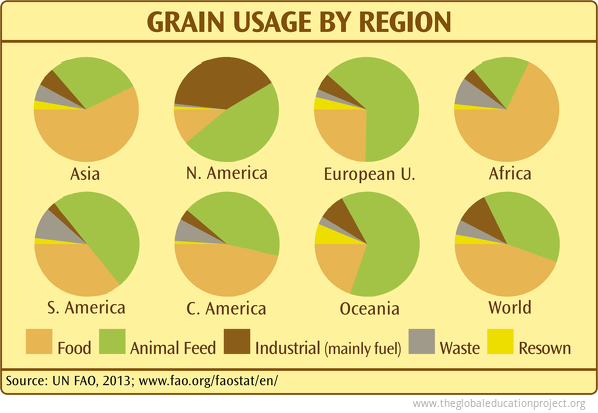 Grain Usage by Region
