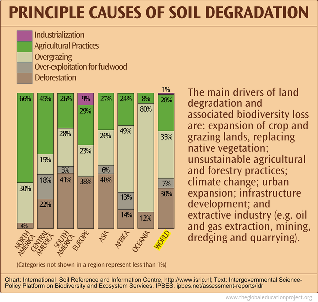 Principal Causes of Soil Degradation